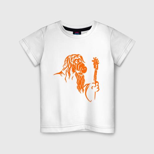 Детская футболка хлопок Мастер альф