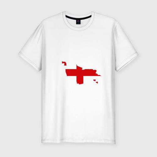 Мужская футболка хлопок Slim Грузия (Georgia)