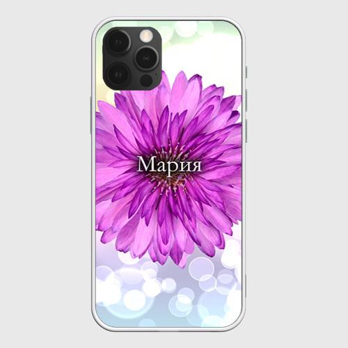 Чехол для iPhone 12 Pro Max Мария