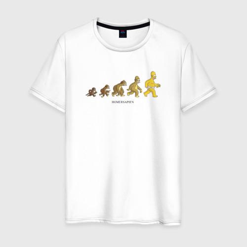 Мужская футболка хлопок Эволюция Гомера