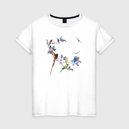 Женская футболка хлопок экзотические птицы