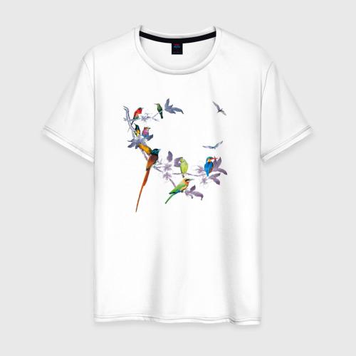 Мужская футболка хлопок экзотические птицы