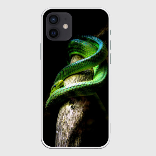 Чехол для iPhone 12 Mini Змея на груди