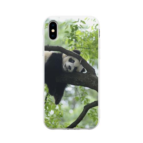 Чехол для iPhone X матовый Панда спит на ветке