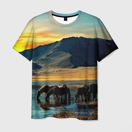 Мужская футболка 3D Лошади