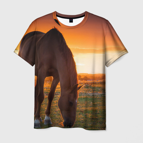 Мужская футболка 3D Лошадь на закате