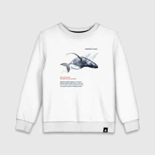 Детский свитшот хлопок Hampback whale