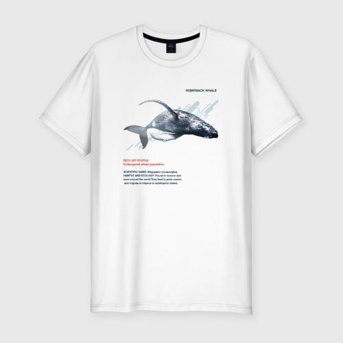 Мужская футболка хлопок Slim Hampback whale