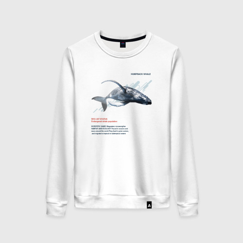 Женский свитшот хлопок Hampback whale